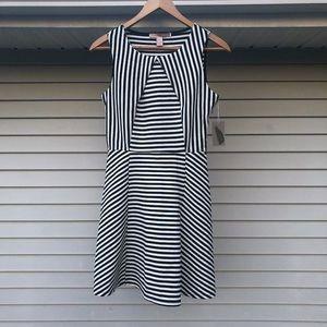 NWT! Black & White Striped Dress